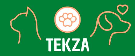 Tekza